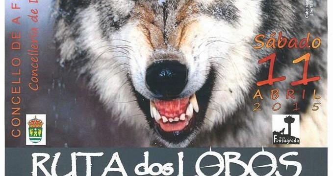 RUTA DOS LOBOS  II